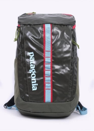 Patagonia Black Hole 25L Backpack - Spanish Moss