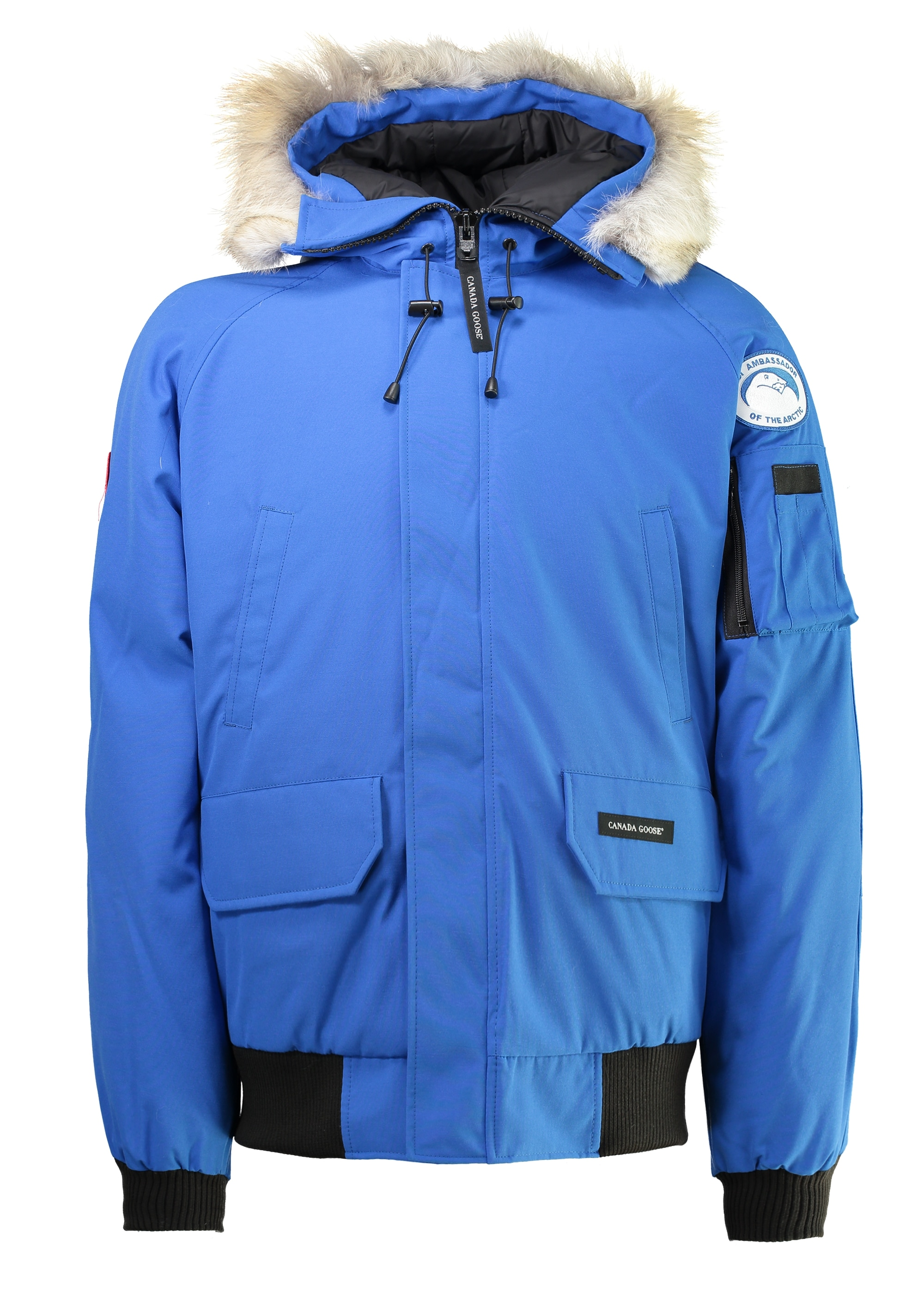 Canada Goose Chilliwack Bomber PBI - Royal Blue